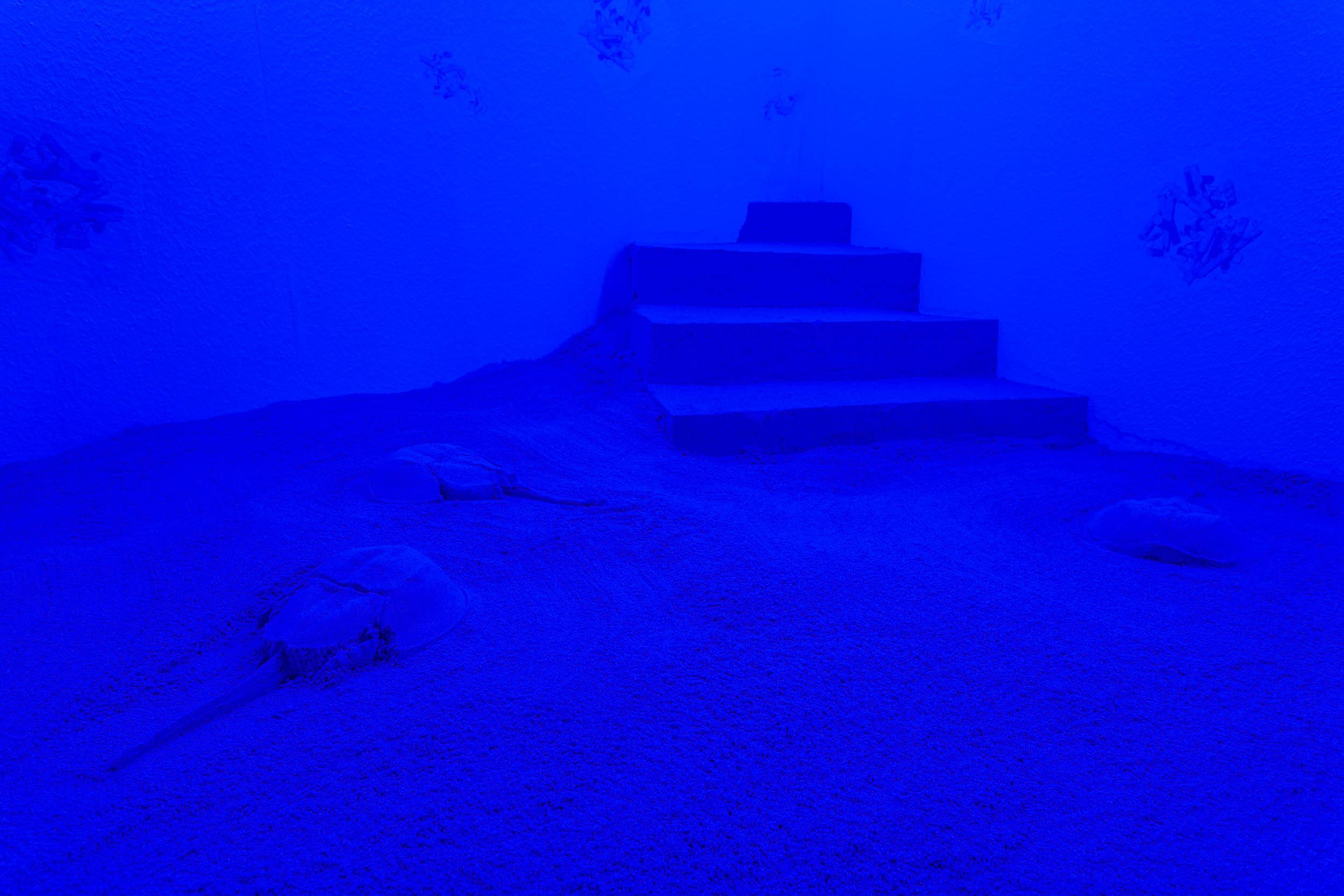 Nadim Abbas,  BLUE NOON  (detail), mixed media installation, dimensions variable   Photo: Kilian Bannwart