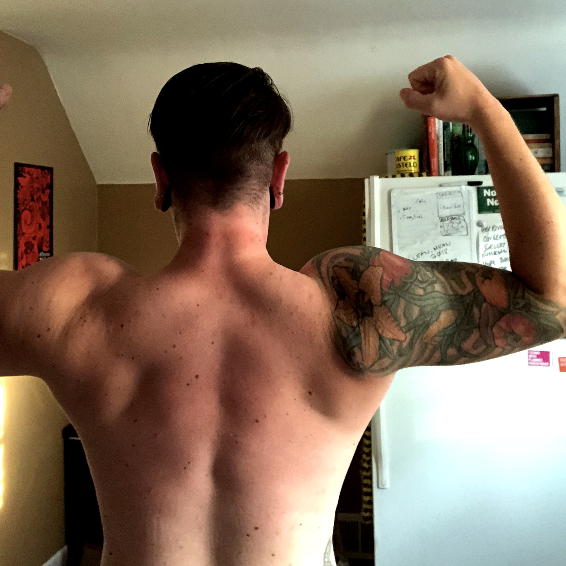 Back progress, June 2018