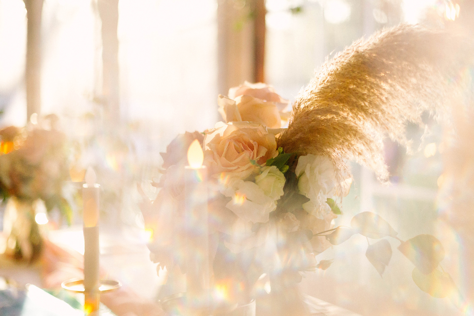We love playing with light, of course! (Image by Poppy & Sage Photography.)