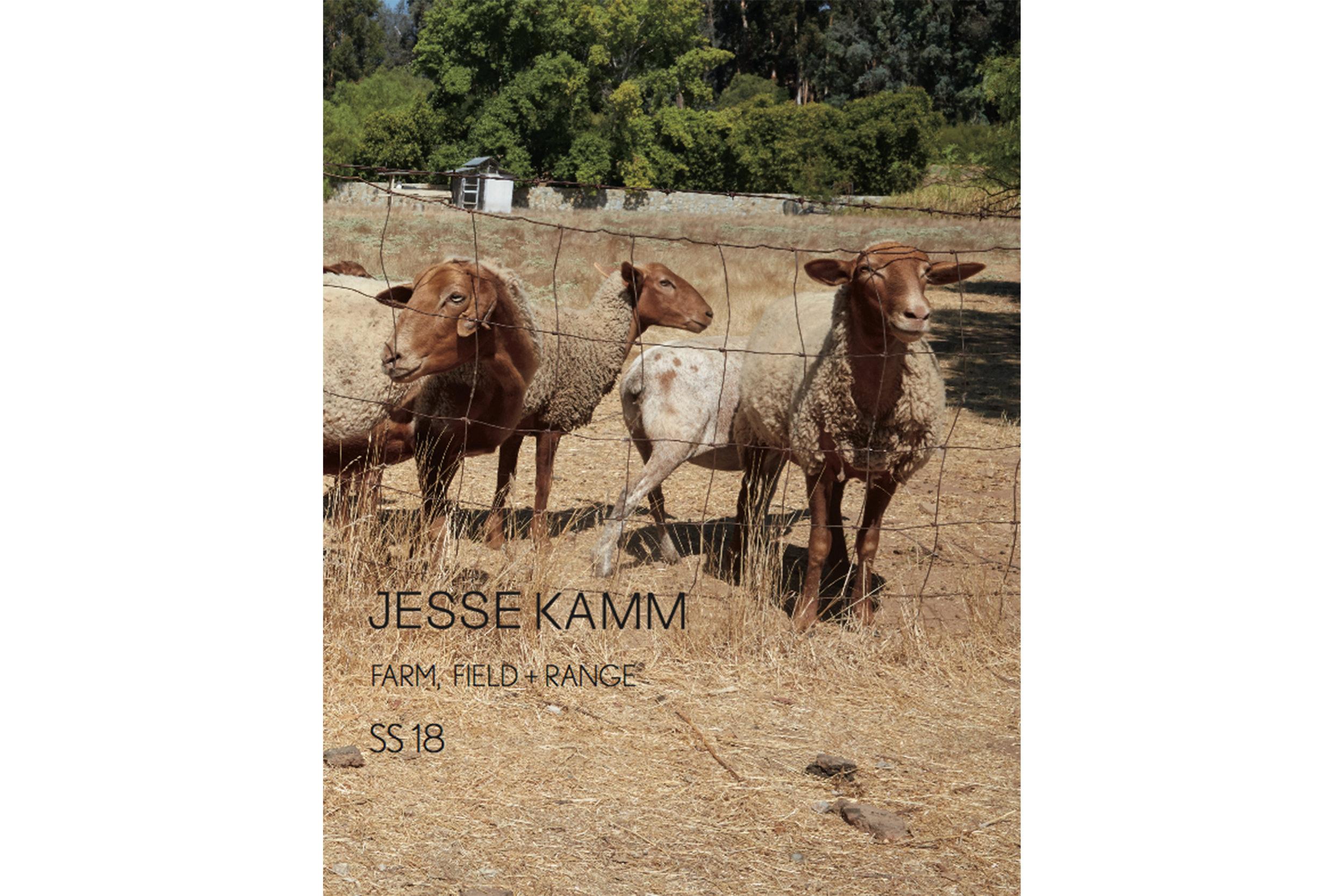 Jesse-Kamm
