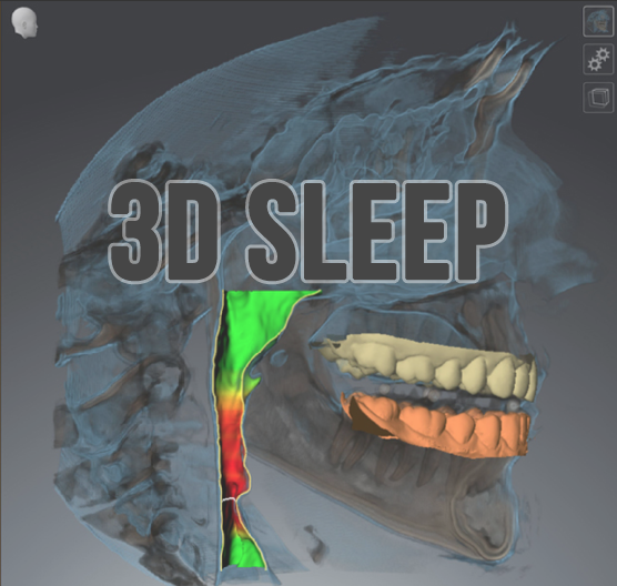 3D SLEEP.png