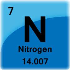Nitrogen is Key for a Healthy Tree!