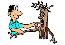 Flooding Causes Sick Trees!