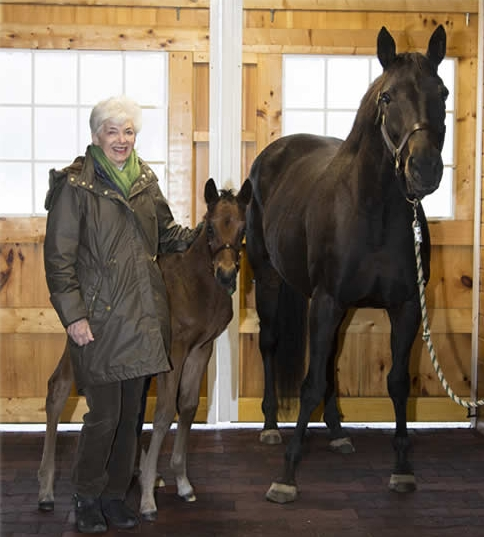 Vivien Malloy with Ouchy Night and her 2016 colt by Street Sense.