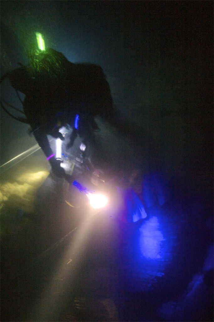 The night diver