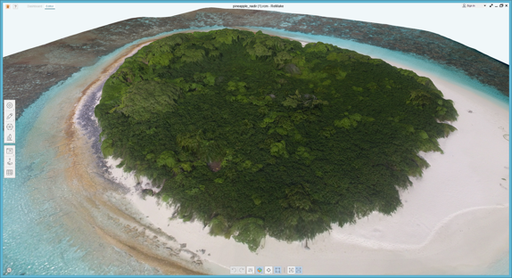 Photogrammetry of the Pineapple Island