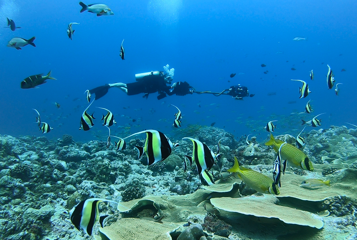 Rick Miskiv filming moorish idols with the VRTUL2