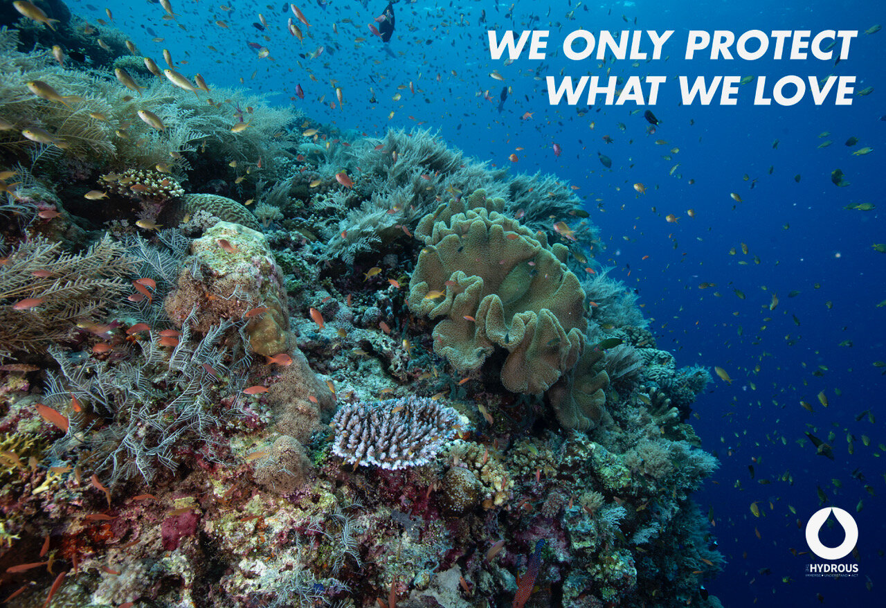 Poster-7A Reef Protect what we love.jpeg