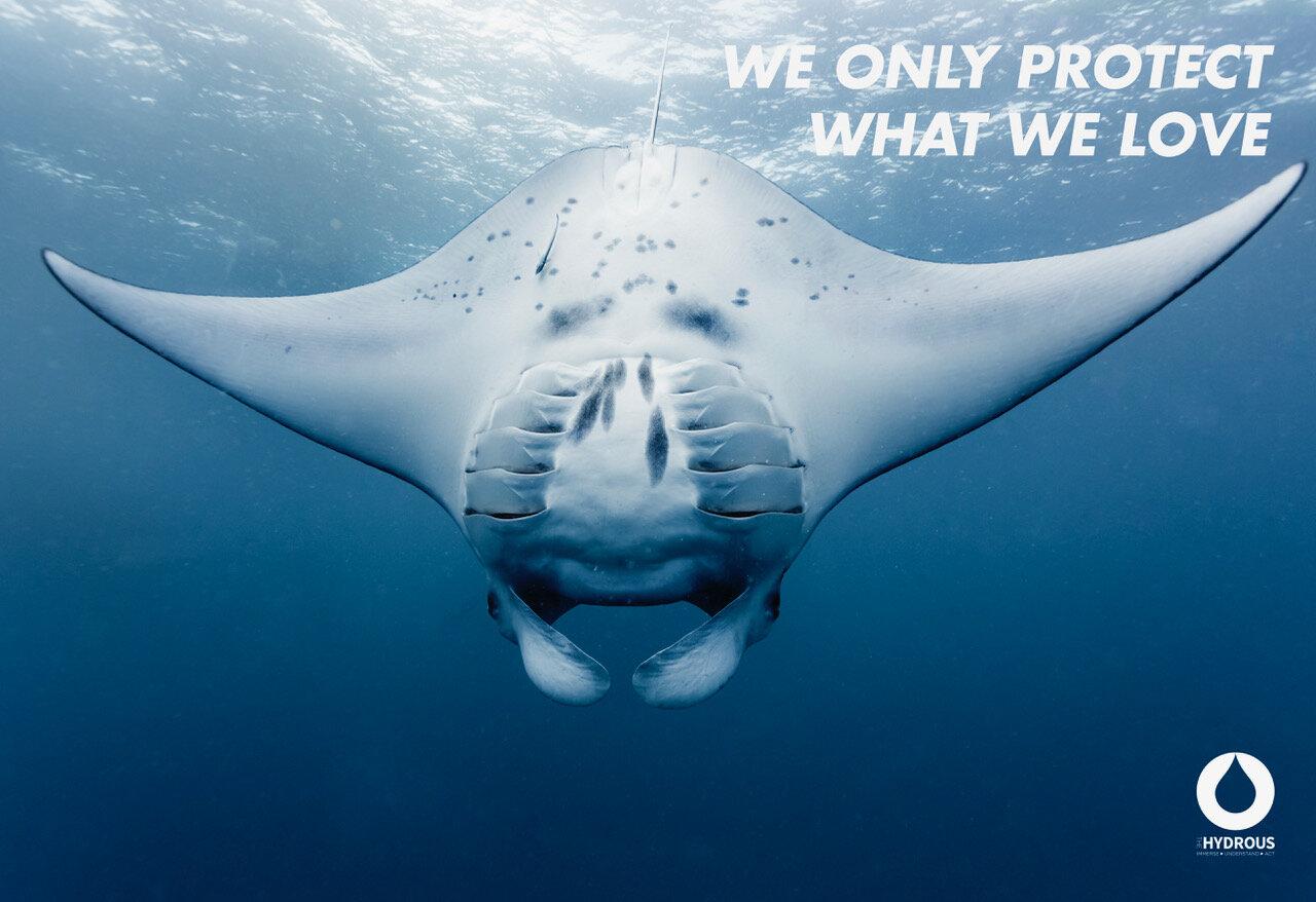 Poster-8A Manta protect what we love.jpeg