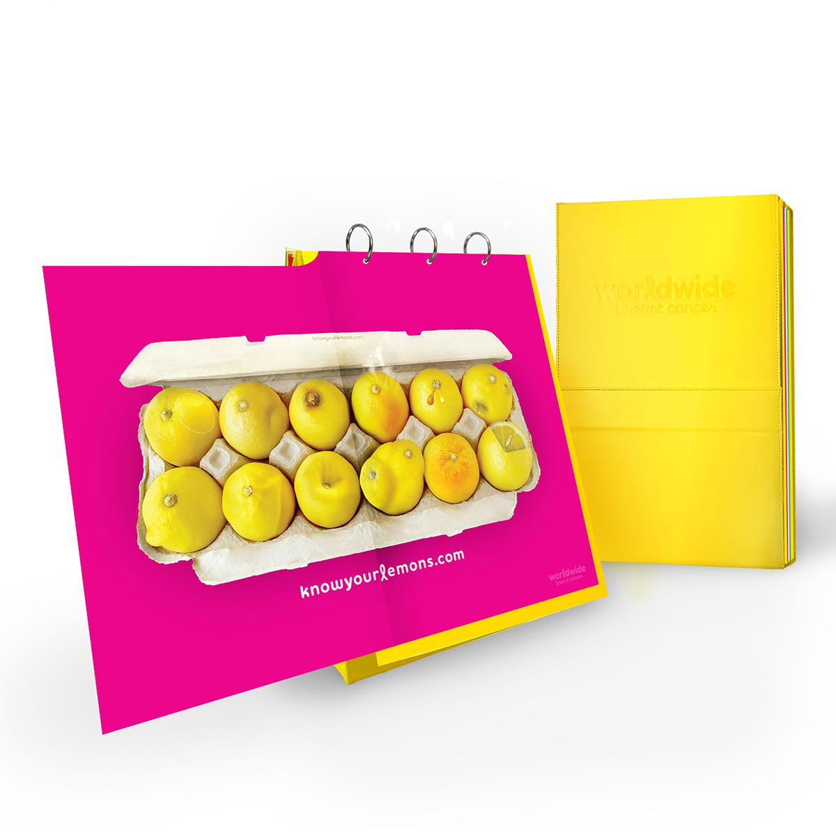 Breast Cancer Flipchart Know Your Lemons Education Kit