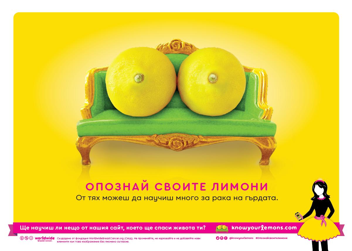 Bulgarian_sofa (A)_1200 px w.png