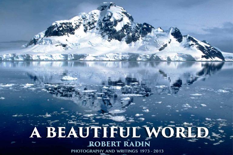robert radin A beautiful world cover.jpg