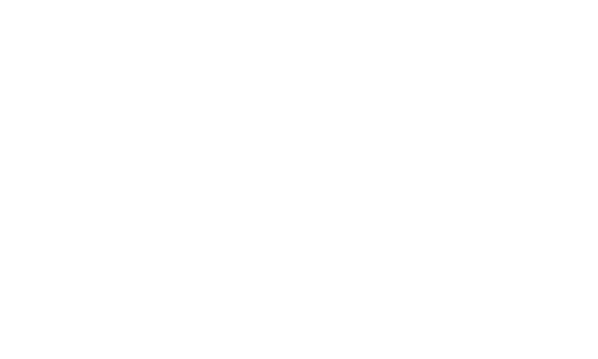 MATESHIP-logo-white.png