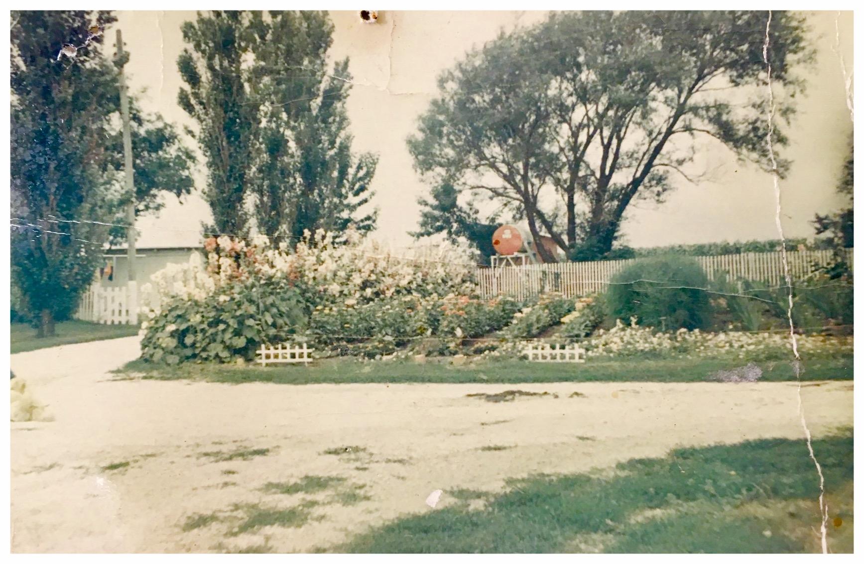 My Grandmother's garden in rural Iowa