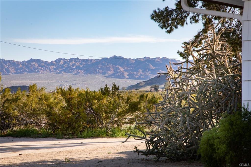 desert63.jpg