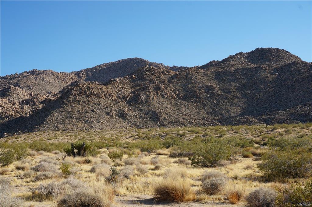 foothill1.jpeg
