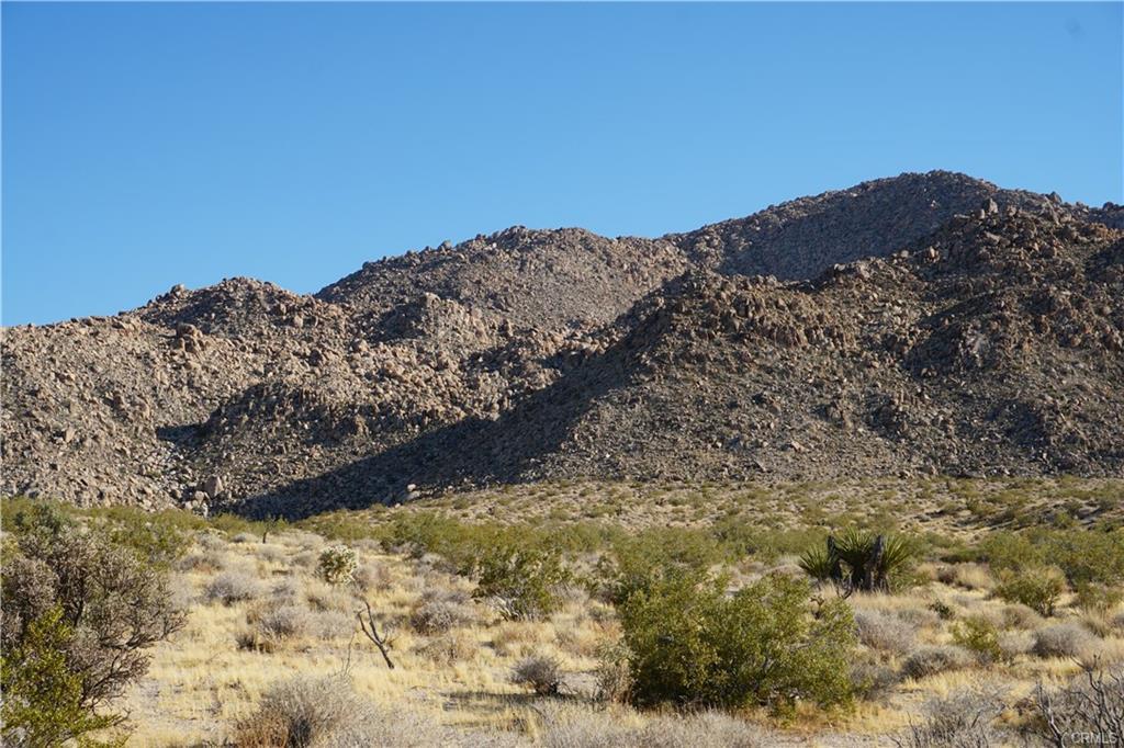foothill5.jpeg