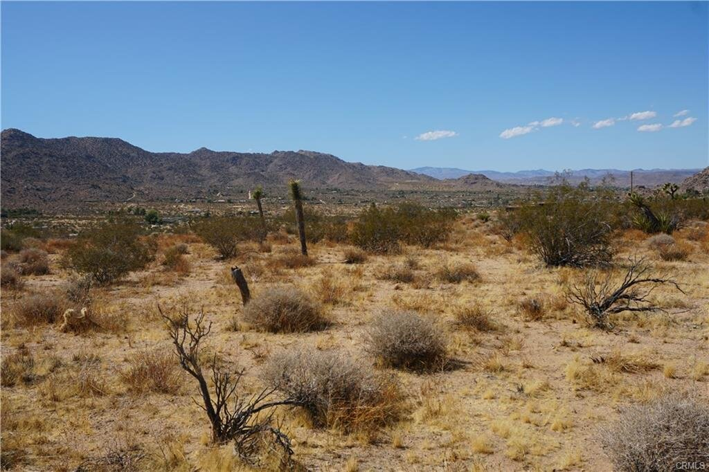 desert3.jpeg