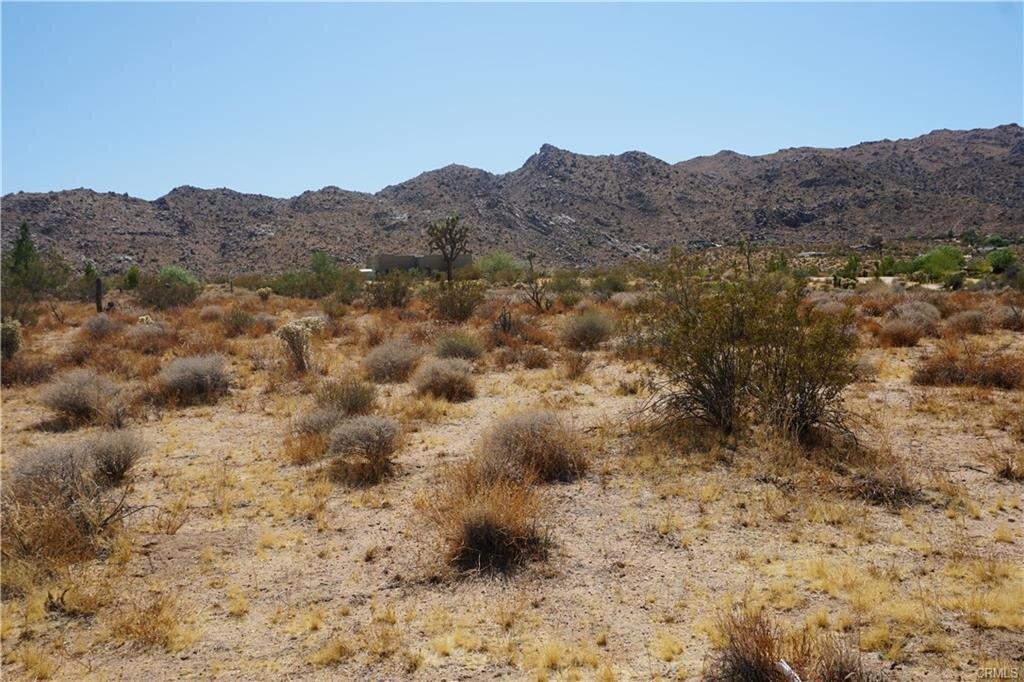 desert4.jpeg