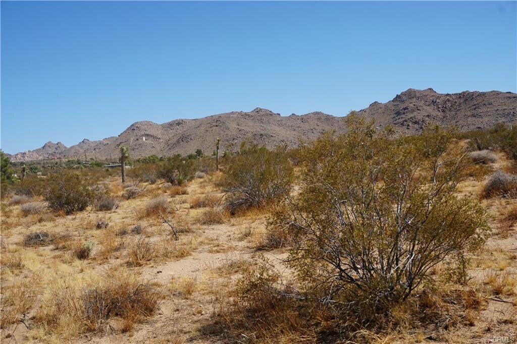 desert5.jpeg