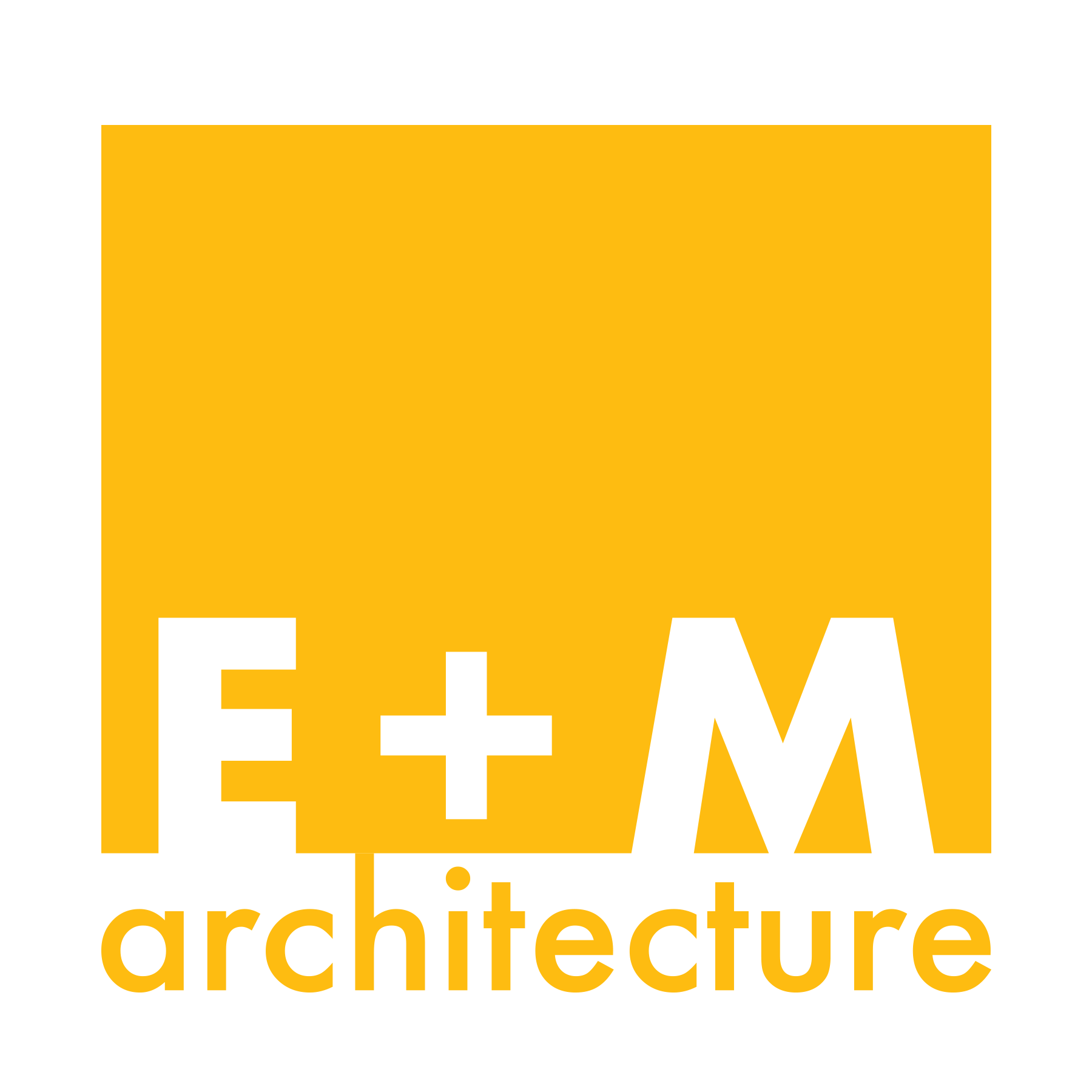 E + M Square.png