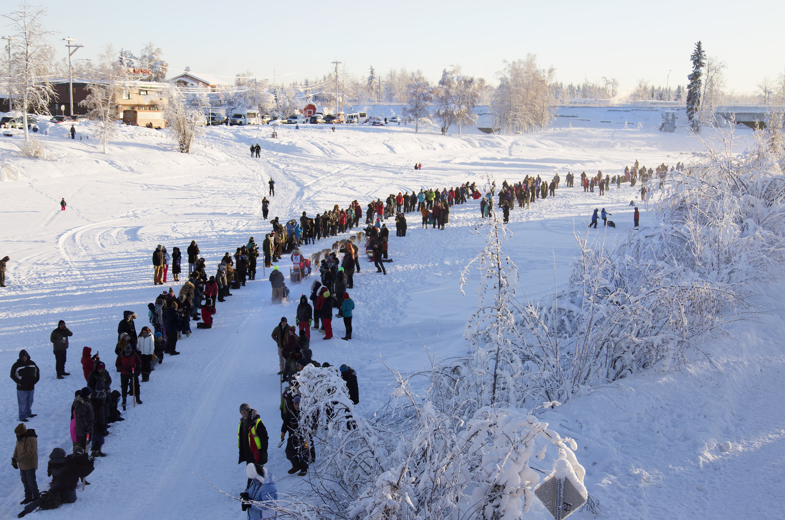 # 15 Laura Neese disappears in the crowd with her team as she ascends out of the chute and onto the frozen Chena River in downtown Fairbanks, AK on the first day of the 2018 Yukon Quest. Spectators line either side of the trail on the frozen river. (c) Sarah Manriquez 2018