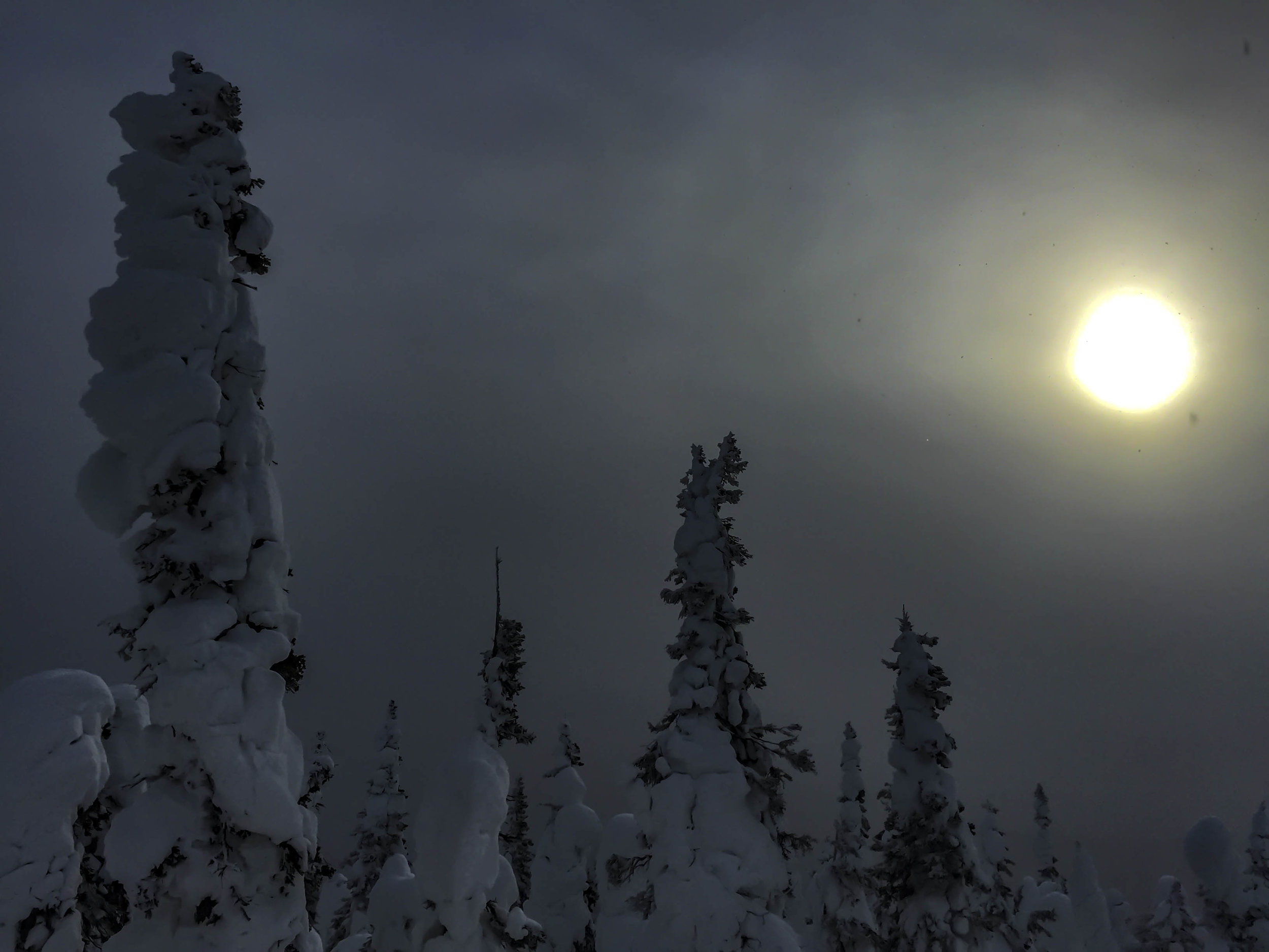A snow storm rolls in and blocks out most of the sun making it feel like night.