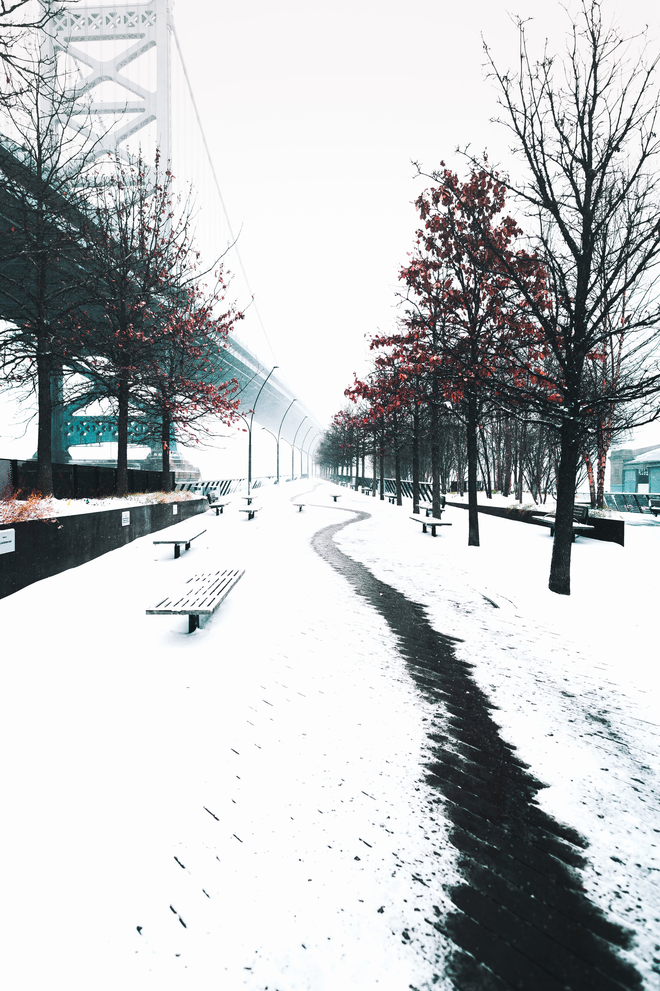 SNOW DAY-4226.jpg
