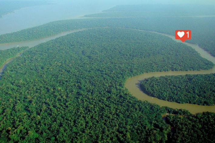 Claramente eu, sozinho, no meio da floresta amazônica