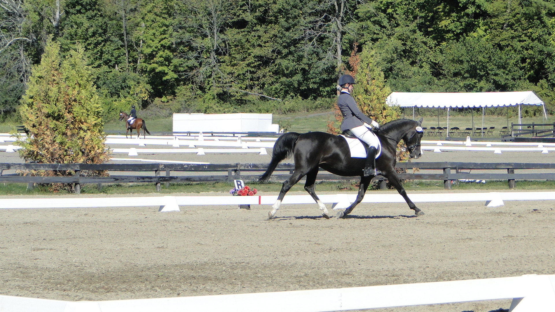 Mel Policicchio and Zoe (owner: Pam McCready)