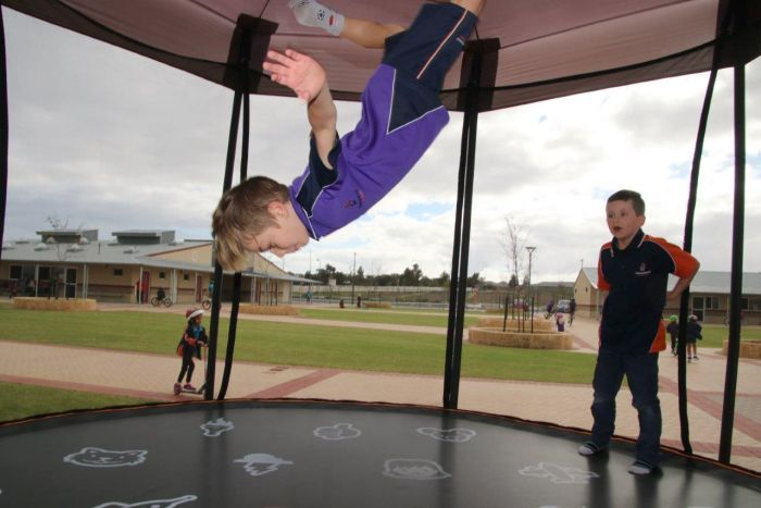 PHOTO:Kids at Honeywood Primary School are head over heels for their trampolines.(ABC News: Rebecca Carmody)