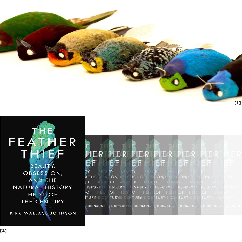 [1]  Photo: Jesse Williamson  [2]  The Feather Thief