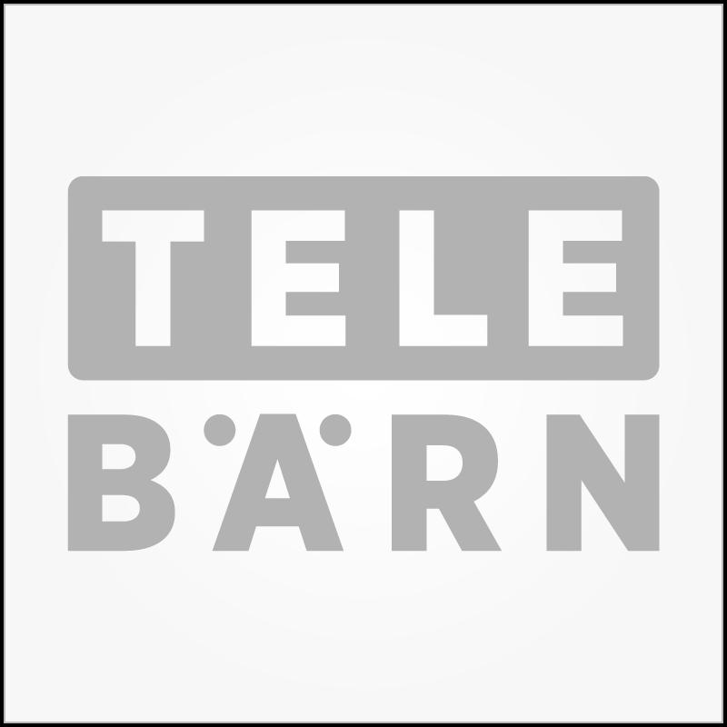 TeleBärn