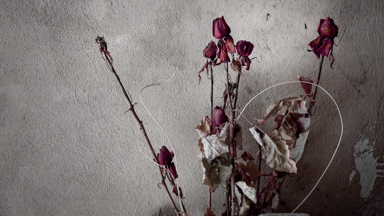 Rose Morto