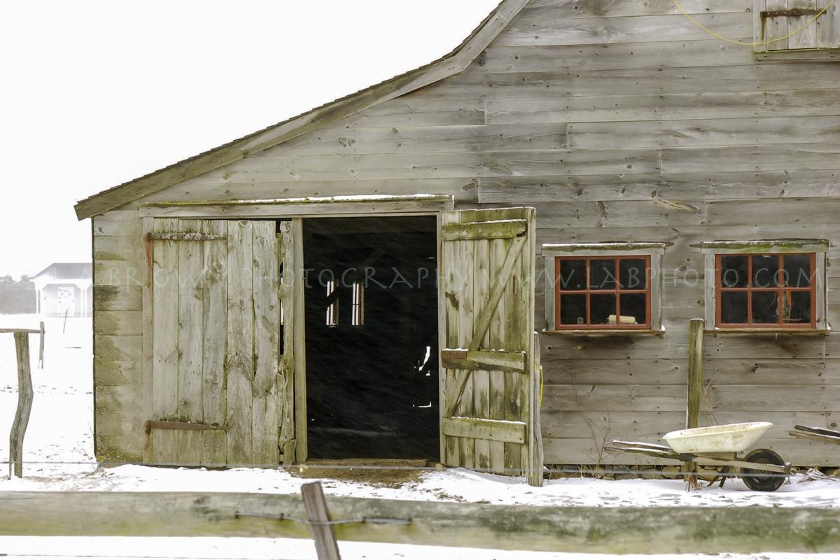 Mr Honey's Barn