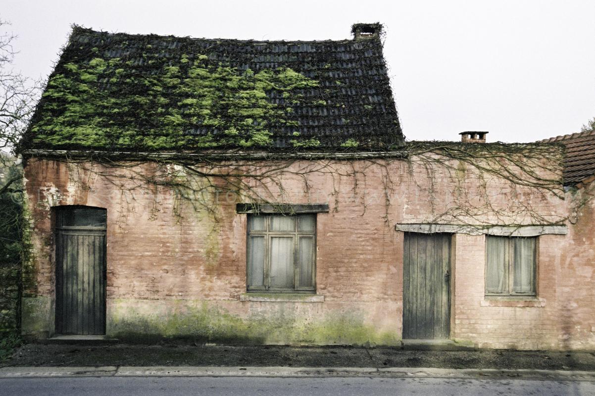 Belgian Pink House