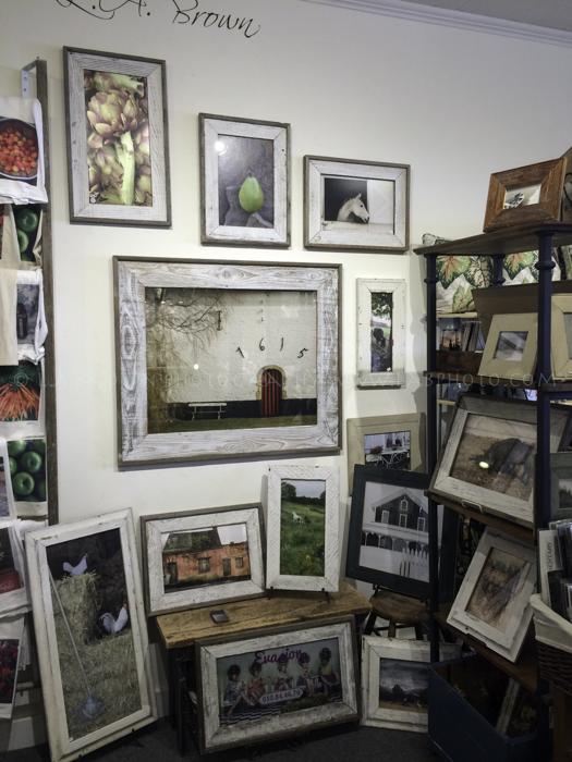 Night Heron Gallery