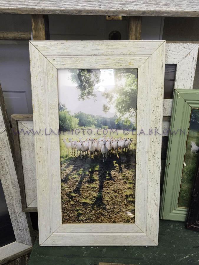 LABPHOTO Framing  - 35.jpg