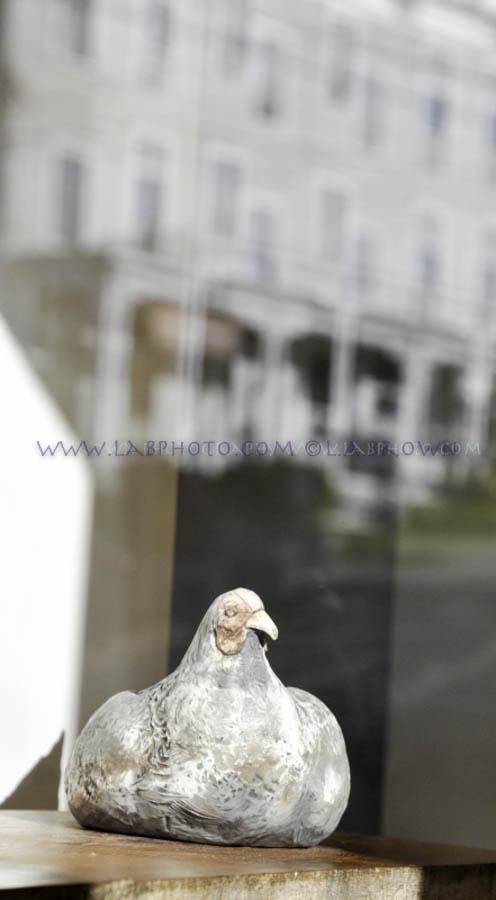 LABPHOTO Still Life-16.jpg