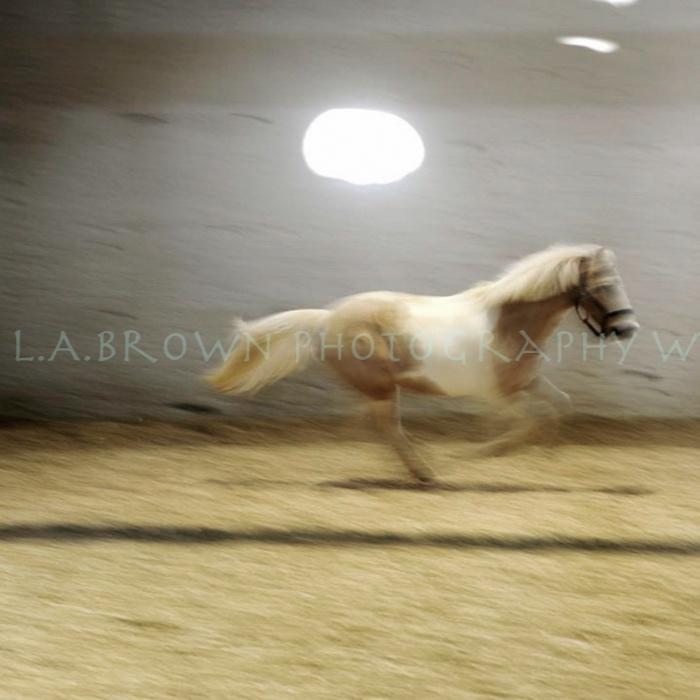 running donna-1.jpg