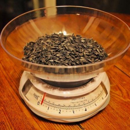 seed - $300/yr
