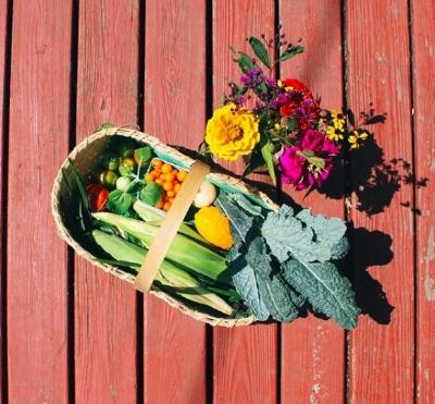 coeur et sol 2018spring/summer crops  -
