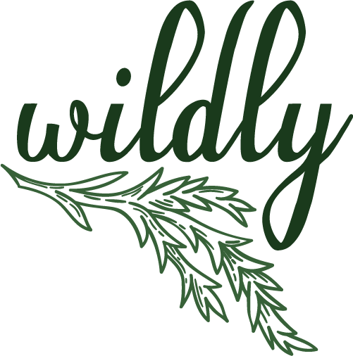 wildly_logo_color_RGB.png