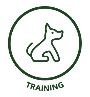 icon_training.png