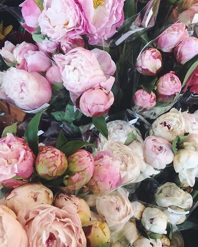 All the peonies // #peonies #freshflowers #pinkpeonies