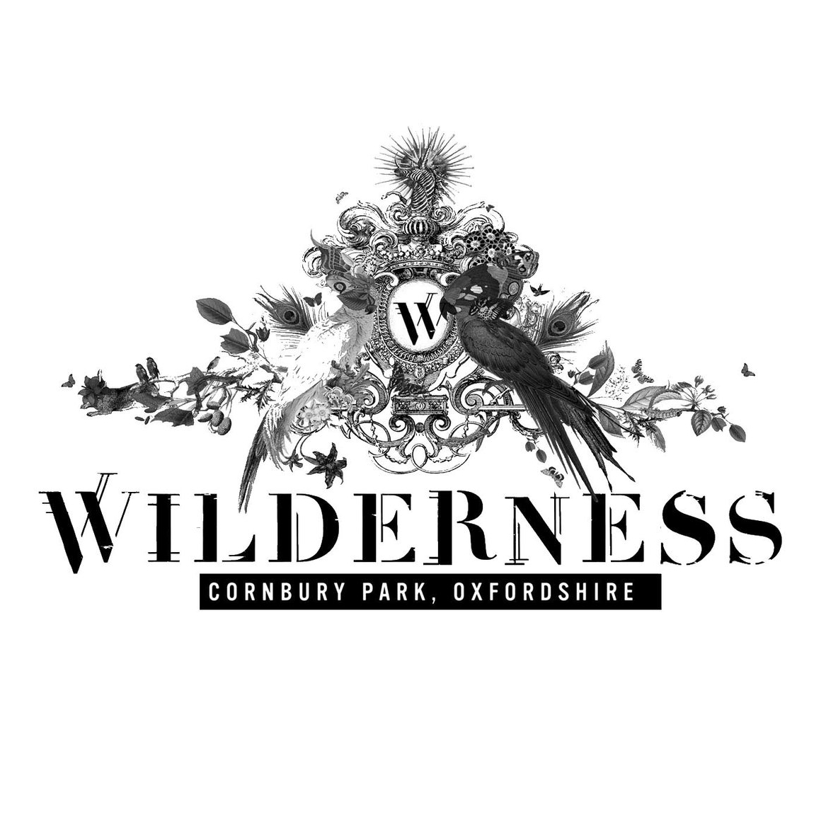 wilderness logo sq.jpg