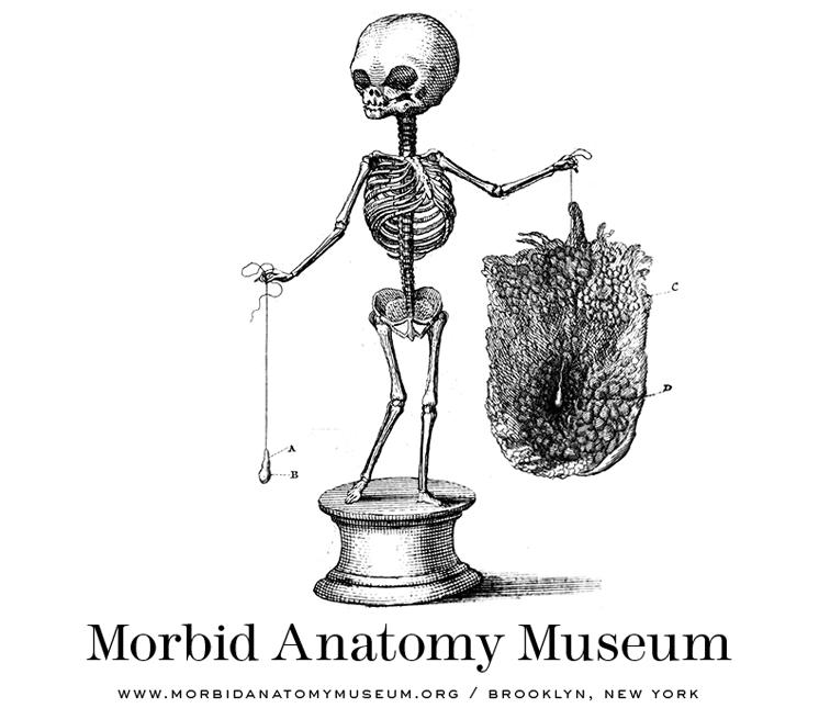 morbid anatomy logo.png