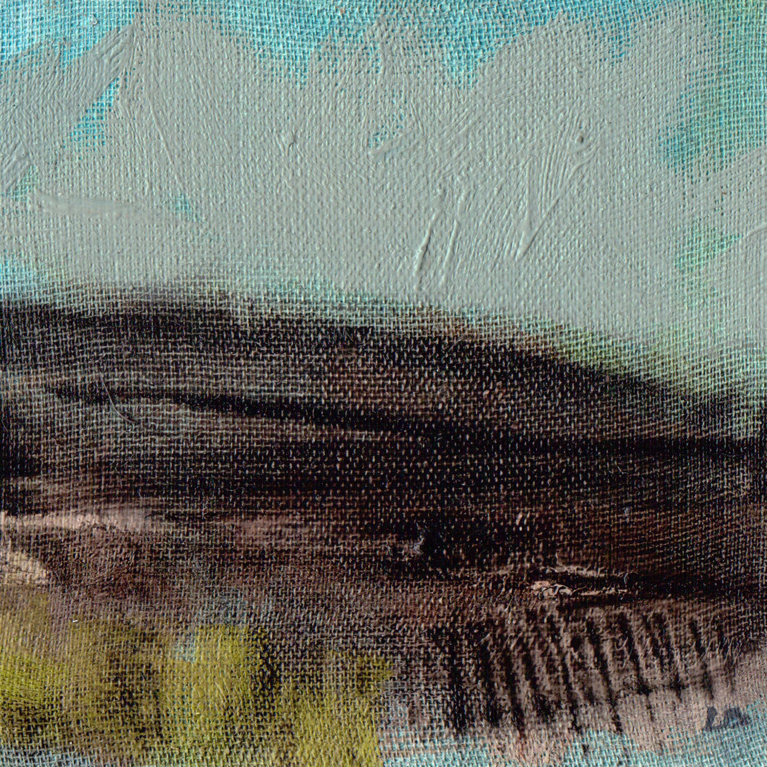 'BOG AND GORSE'