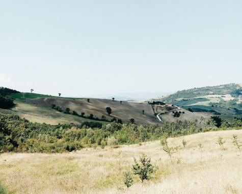 upward umbrian hills. 2016