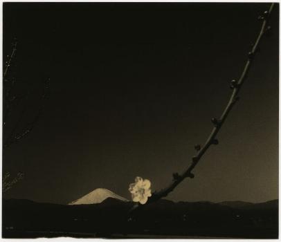 'Nakazora' series, small things in silence. 2001